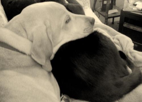 Andi & Boo